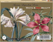 White and Red Beauty Bridge cards
